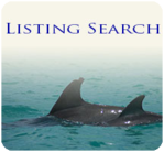 Listing Search.png